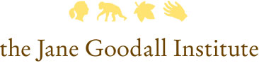 the Jane Goodall Institute logo